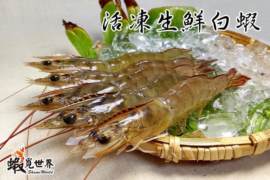 急凍生鮮白蝦-02.jpg